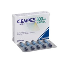 Cempes 300